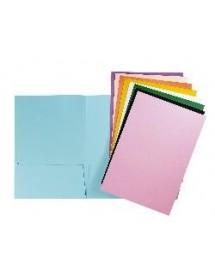 תיק הגשת מסמכים A4, שני תאים